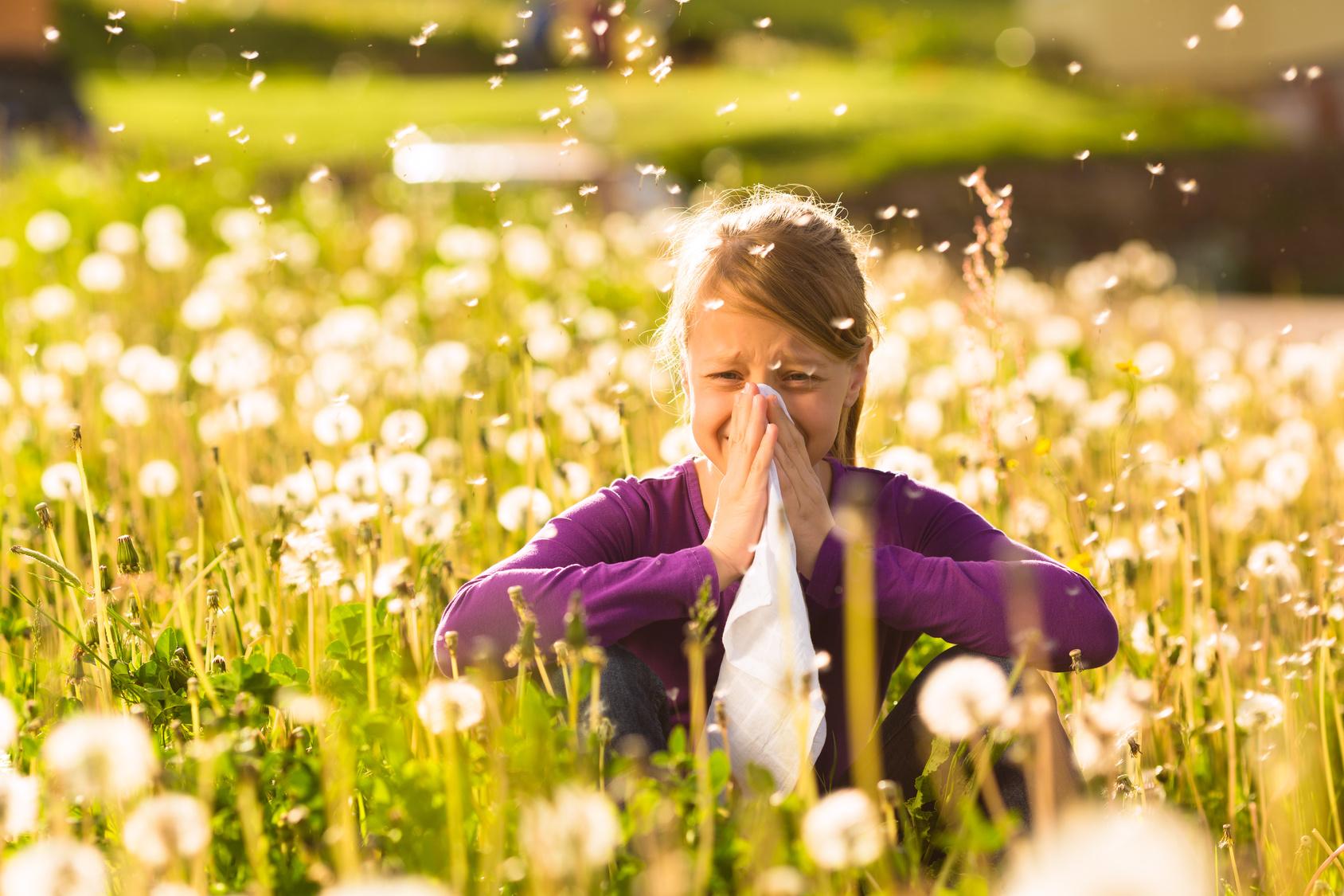 Arrivano i pollini di primavera, l'allergia è in agguato